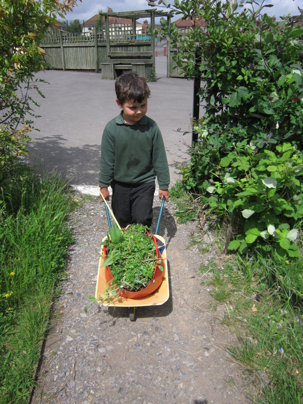 Our Garden Cheddar Grove Primary School